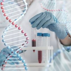 Les différents types de tests ADN